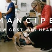 Emancipet-2015-Video-Thumbnail-e1446769384161